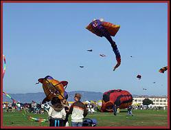 3d kite