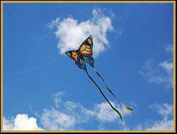animal kite