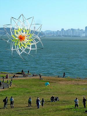 Big Unusual Kite