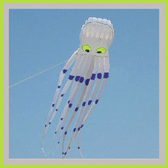wind kites octopus
