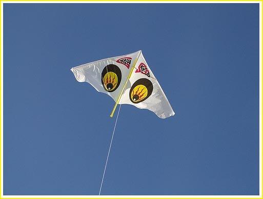 kids types of kites