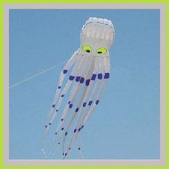 wind kites octopus